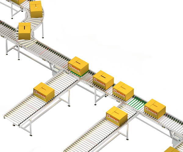 Carton Merge & Sorting System